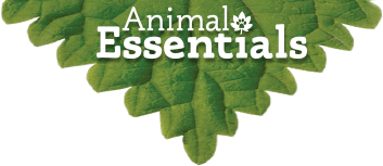 Animal Essentials Coupons