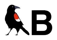 Blackbird Framing Coupons & Promo codes