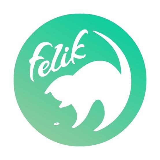 Felik Coupons & Promo codes