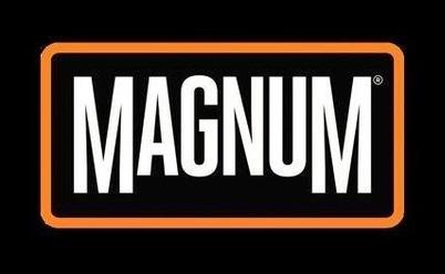 Magoosh Free Trial Coupons & Promo codes