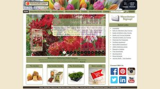 New Holland Bulb Company Coupon & Promo codes