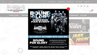 Pro Wrestling Tees Coupon Code & Promo codes