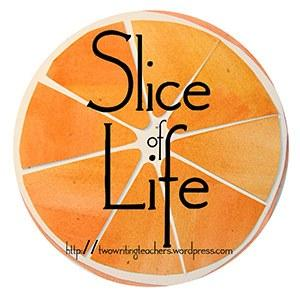 Slicelife Coupons & Promo codes