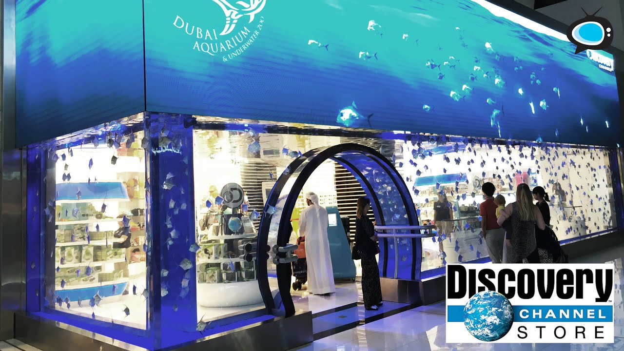 top 4 easy ways to save money at discovery channel store