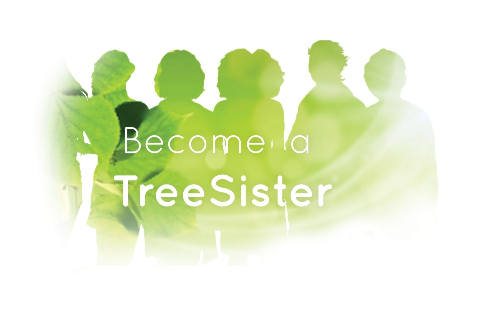 Tree Sisters Coupons & Promo codes