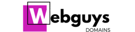Webguysdomains